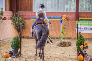 Working Equitation Tor