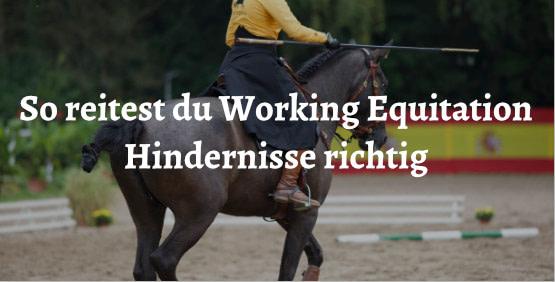 Working Equitation und Hindernisse bei Picadera